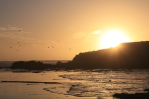 California in all its beachy glory.