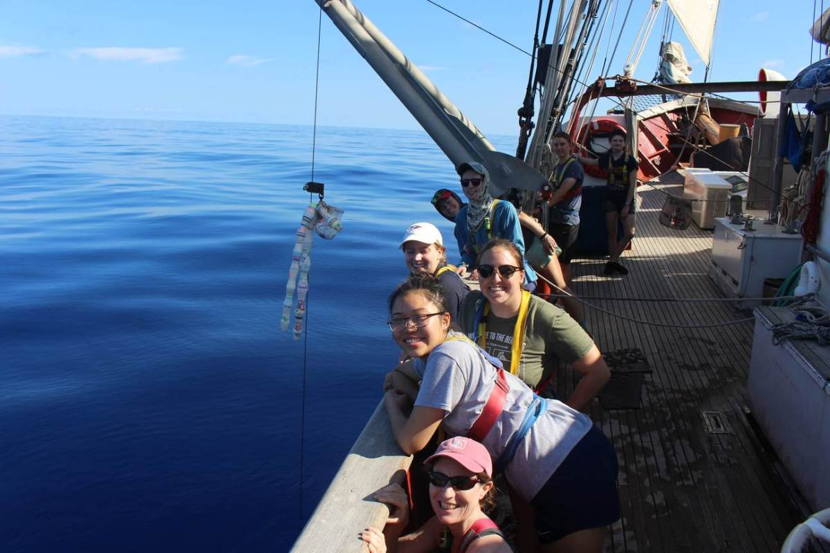 Image shows students leaned over the side of a ship. A mesh bag full of shrunken styrofoam cups dangles from a line, suspended over the placid, picture-perfect blue waters.